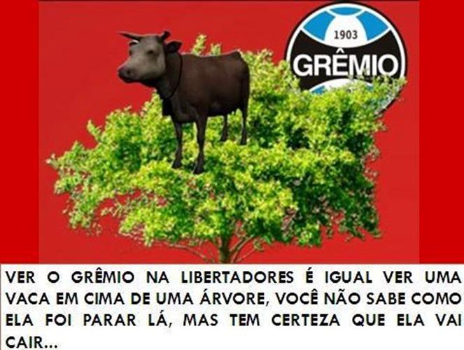 Gremio e Libertadores